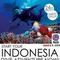 Diving Indonesia