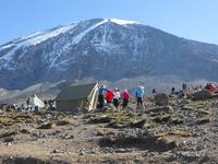 Climbing Kilimanjro - Lemosho Route