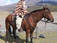3 Days Horse Back Riding