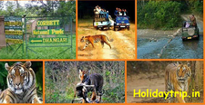 Jim Corbett Packages