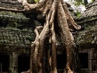Cambodia - Vietnam Tour