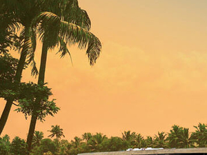 Luxury Cruise on backwaters of Kerala Fotos