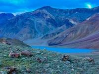 Himachal & Ladakh Adventure