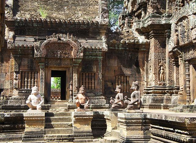 Wildlife, Outlying Angkor Adventure Tour Photos