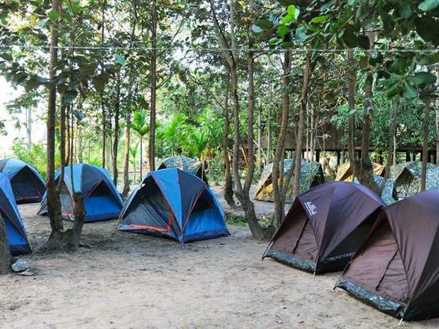 Wildlife, Phnom Kulen Trekking & Camping Photos