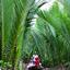 Mekong Delta Ben Tre Boat Excursion 02 800x600