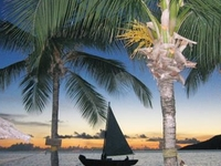 Free Honeymoon packages and upgrades for honeymooners!