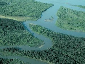 Río de Noatak