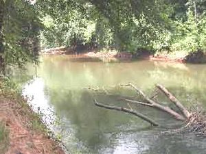 Río Ocmulgee