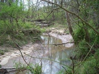 Casey Creek
