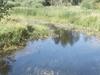 Partridge River
