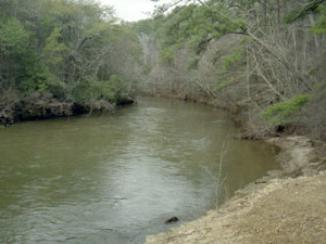 Río Chunky