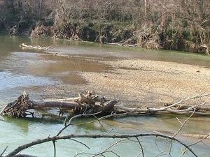Lamer el río