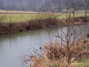 Shade River