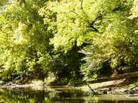 Tiffin River