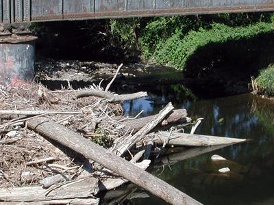 Abiqua Creek