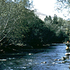 Catherine Creek