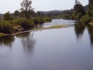 Costa Tenedor Willamette River