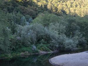 Kilchis Río