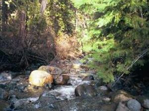 Poco Applegate River