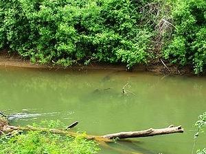Luckiamute Río