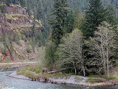 South Fork Clackamas River