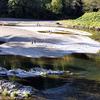 Wilson River