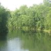 Bald Eagle Creek