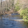 Preto Moshannon Creek