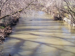 Little Creek Lehigh