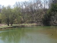 Raccoon Creek