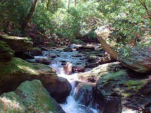 Tucquan Creek