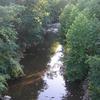 Branco Deer Creek