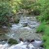 Buraco branco cervos Creek