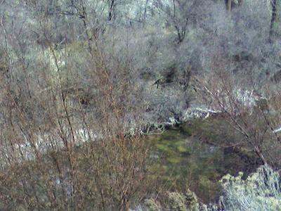American Fork River