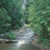 Guest River