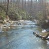 Quantico Creek