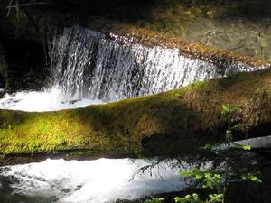 Gran Río Quilcene