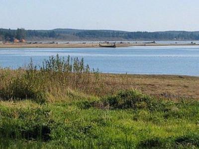Humptulips River