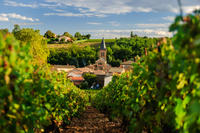12-Day Tour of France from Paris: Normandy, Loire Valley, Bordeaux, Provence, French Riviera, Monaco and Burgundy Photos