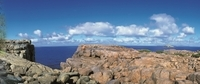 4-Day Tour from Perth Including Margaret River, Valley of the Giants Tree Top Walk, Albany and Wave Rock Photos