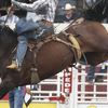 5-Night Canadian Rockies Tour from Vancouver with Calgary Stampede Admission