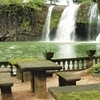Atherton Tablelands, Paronella Park and Millaa Millaa Waterfall Circuit Eco-Tour