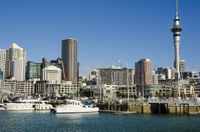 Auckland Harbour Lunch Cruise Photos