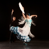 Barcelona Gourmet Tapas Walking Tour and Flamenco Show Photos