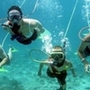 Belize Snuba Adventure Tour from Ambergris Caye
