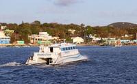 Bioluminescent Bay Catamaran Cruise with Dinner Photos