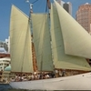 Boston Tall Ship Day Cruise