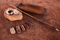 Bush Tucker Indigenous Food Tour from Ayers Rock Photos