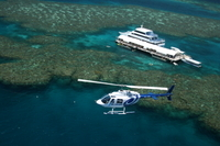 Cairns Shore Excursion: Great Barrier Reef and Rainforest Helicopter Tours Photos